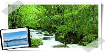 東北仙台花卷青森